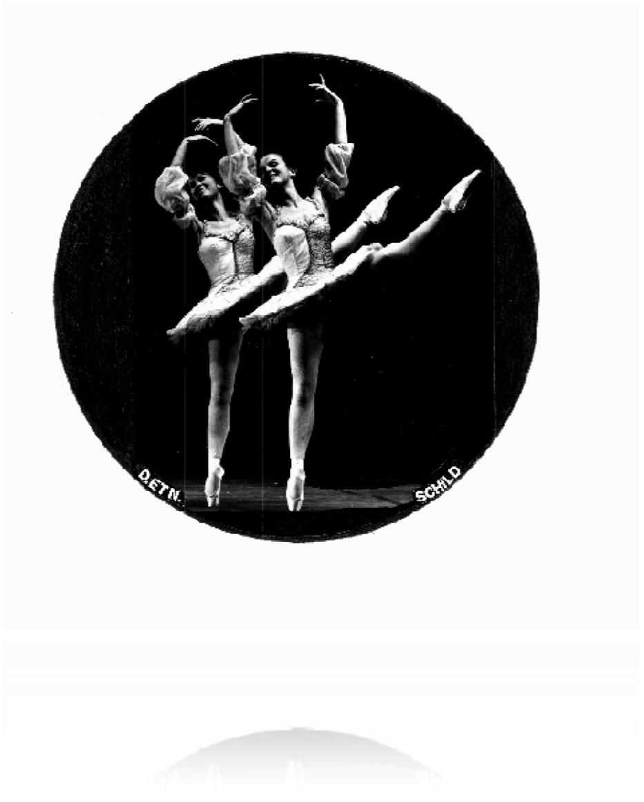 Bild Schild Nicole et Danièle