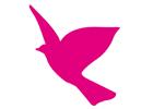 Bild Wings School AG