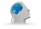 Immagine Praxis für Neurofeedback und Ernährung