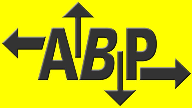 ABP Transports et déménagements, P.N. Schütz
