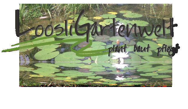 Bild Loosli Gartenwelt GmbH