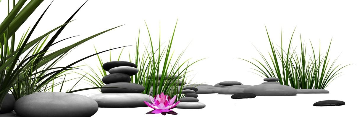 Praxis natürliche Harmonie