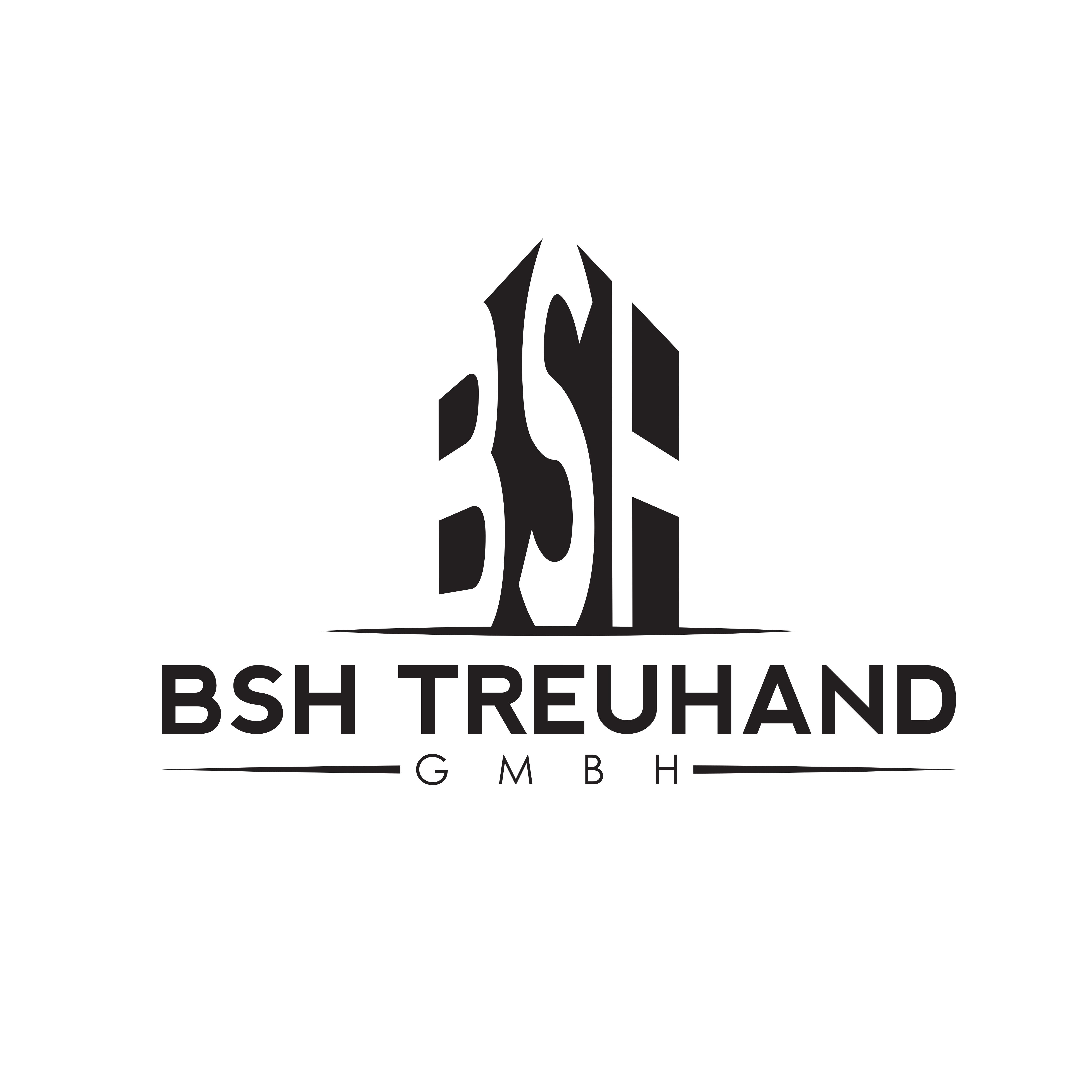 BSH Treuhand GmbH