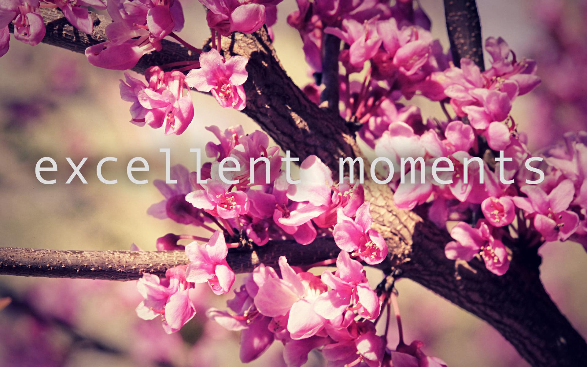 excellent moments