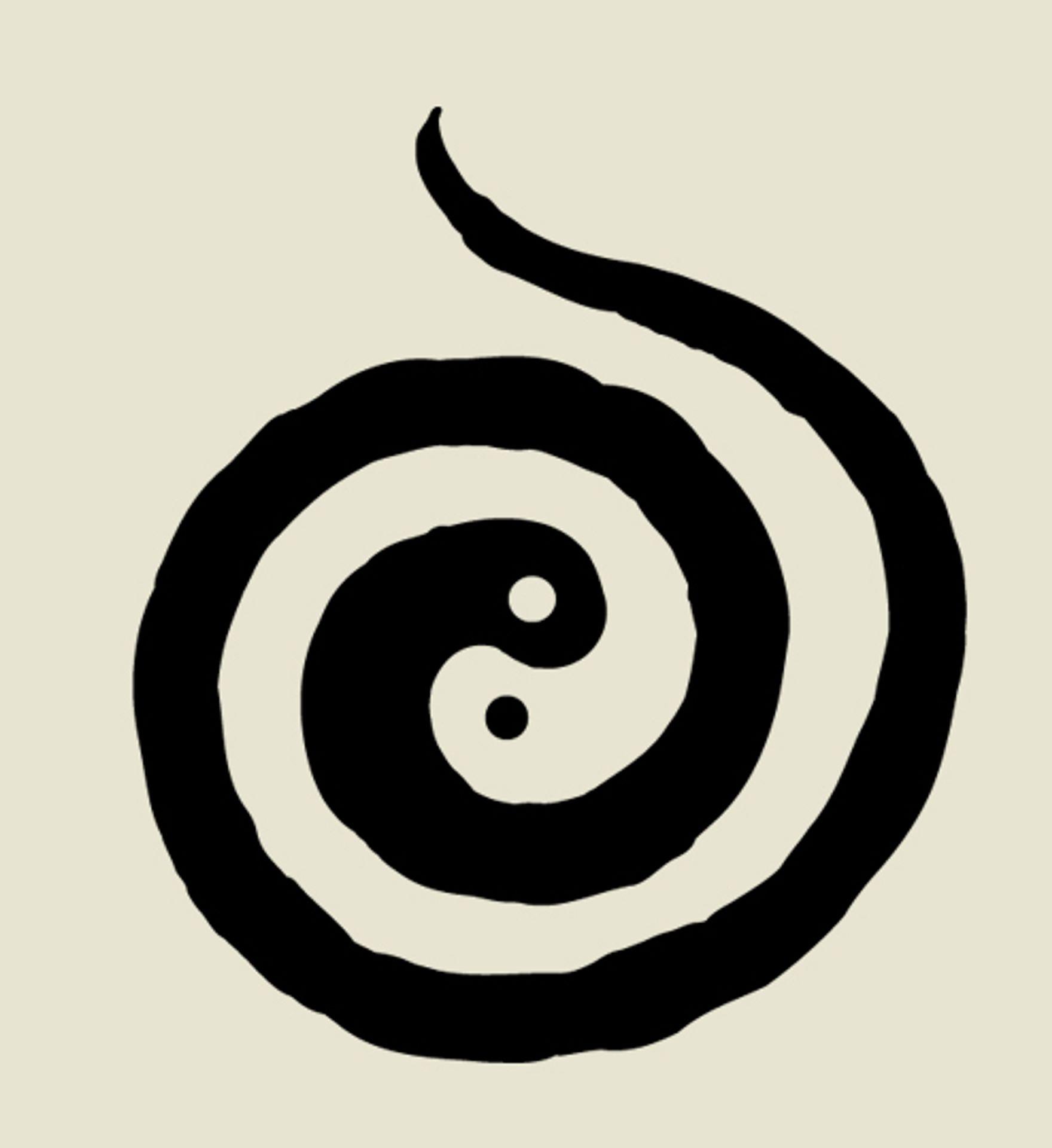 Bild Associazione Il Cerchio Infinito