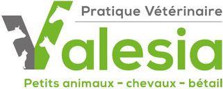 Bild Pratique Vétérinaire Valesia SA