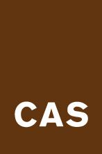 CAS Gruppe AG