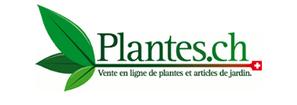 Bild Plantes.ch