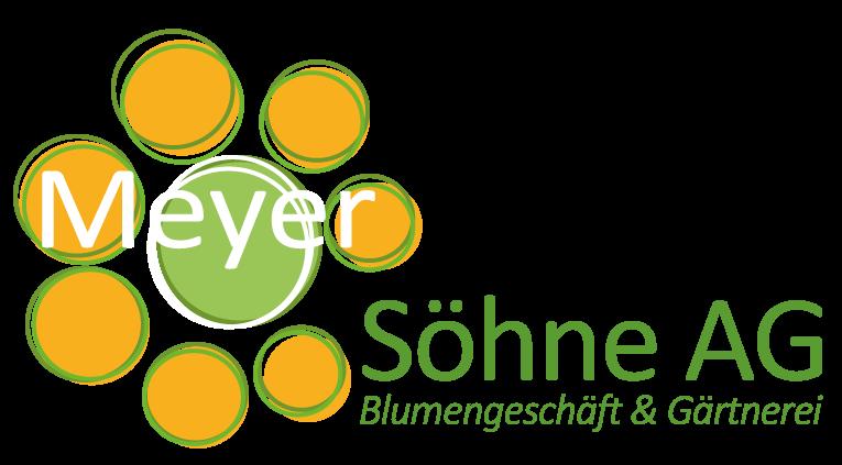 Bild Meyer Söhne AG