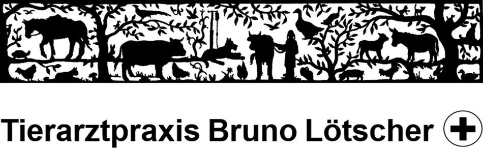 Immagine Lötscher Bruno