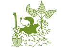 Schär und Stalder Gartenbau GmbH