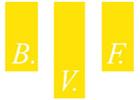 BVF, Bau-, Verwaltungs-, Finanzierungs- und Treuhand AG