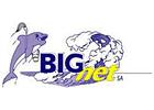 Big Net SA