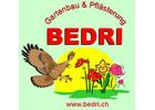 BEDRI GMBH