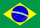 Instituto Cultural Brasileiro