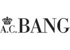 A. C. Bang AG
