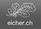 Treuhandbüro Werner Eicher Verwaltungs und Treuhand AG